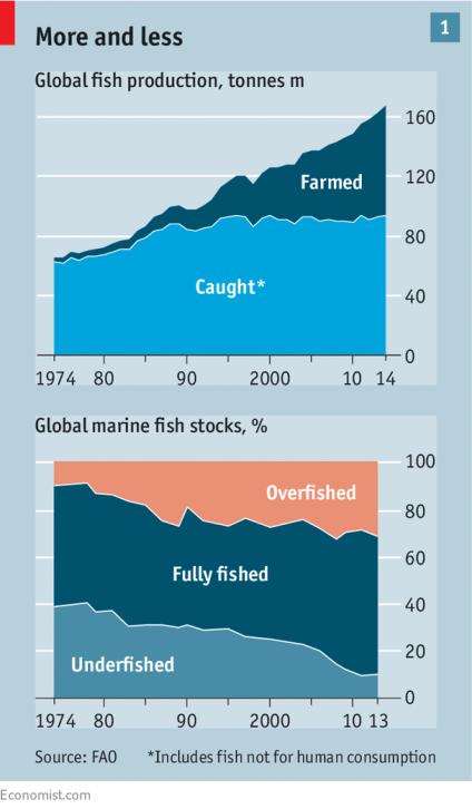 economist_graph